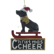 Personlized 3D Dog and Chritmas Gifts Box Ornament